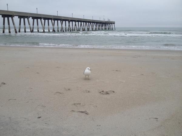 BeachAdventure